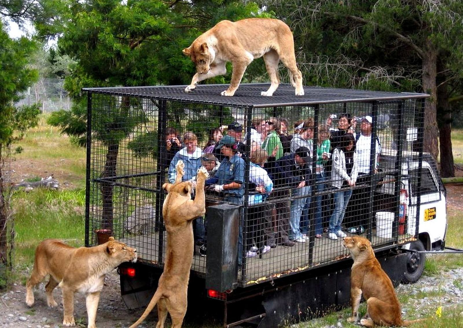 Lehe Ledu Wildlife Zoo